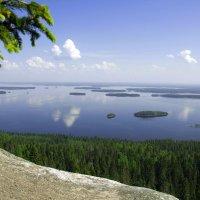 Красочный скучный пейзаж. Национальный парк Коли(Финляндия) :: Евгения Л
