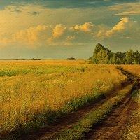 Русское поле :: Эркин Ташматов