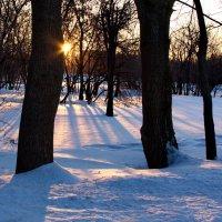уходящее солнце :: Александр Шурпаков