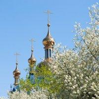 Весна :: Анастасия Климова