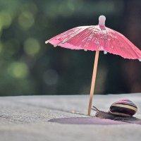 Дама под зонтиком :: Ольга Диброва