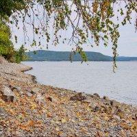 Стояла осень на пороге :: Любовь Потеряхина