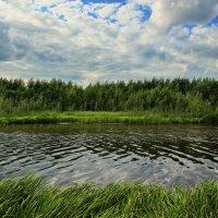 Рыбное место. :: Анастасия Самигуллина