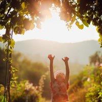 Дотянутся до Солнца :: Екатерина Дулова