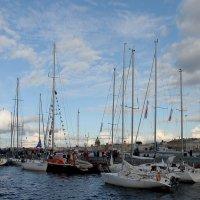 Морской фестиваль :: Вера Моисеева