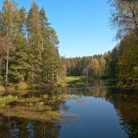 На озере Вселуг :: Galina