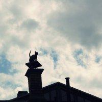 black cat on the chimney :: Halyna Hnativ