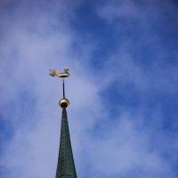 Золотой петушок Риги :: Борис Гребенщиков