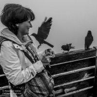 Птицы :: Александр Иванов