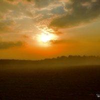 Закат в дымке :: Владимир Родин