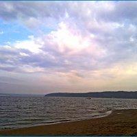 Вечернее солнце :: Любовь Чунарёва