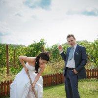 Свадебные садово-полевые работы.... :: Олег Товкач