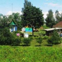 В деревне летом! :: Ирина Олехнович