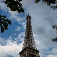 Париж :: Olga Merlinge