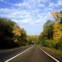 Осенняя дорога :: Татьяна Пальчикова