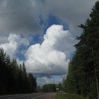 По дороге с облаками... :: ТАТЬЯНА (tatik)