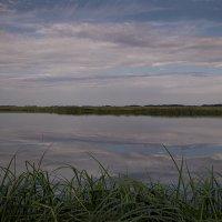 На озере. :: Лилия *