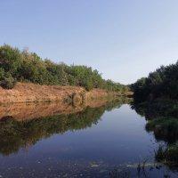Живописное болотце :: Юлия Кириллова