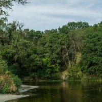 Река Орель. пгт Царичанка :: Владимир Боровков