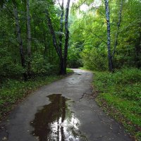 Начало осени в парке IMG_7772 :: Андрей Лукьянов