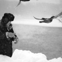Снег :: Александр Зизенков