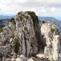 перекус на скале :: Olga