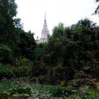В Ботаническом саду :: Андрей Евгеньевич