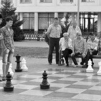...шахматисты... :: Ольга Нарышкова