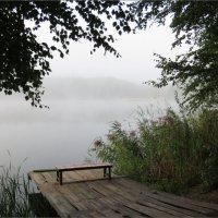 Туманное утро :: Ната Волга