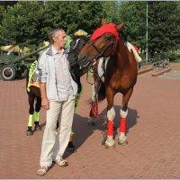 Ласковое слово и лошадям приятно! :: Роланд Дубровский