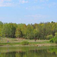Немного весны. Измайловские пейзажи. :: Геннадий Александрович