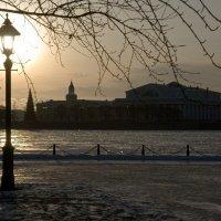 Декабрьское солнце по Питерски.) :: tipchik