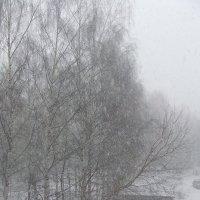 Весна.Снег. :: Anton Сараев