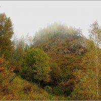 Осенний туман. :: Николай Елисеев