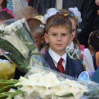 )) :: Светлана