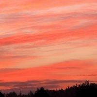 Акварельный закат :: Нина северянка