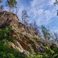 Растущие на скале :: Любовь Потеряхина