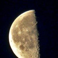 половинка луны :: Геннадий Ячменев