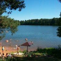 Купальня на Зелёном озере. посёлок Будогощь :: Виктор Елисеев