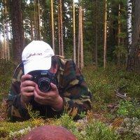 Осеннии забавы :: Андрей Кротов