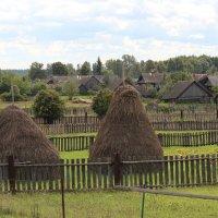 Деревня... :: Елена