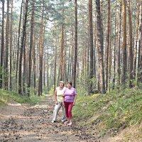 в сосновом лесу :: натальябонд бондаренко