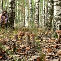 Фото сессия с запахом грибного супа :: Альберт Ханбиков
