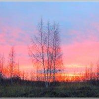 Какая осень без заката...? :: Николай Дементьев