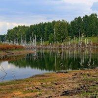 Безымянный  пейзаж. :: Vlad Borschev