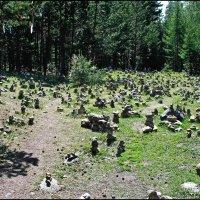 Сад камней в Аршане :: Любовь Чунарёва