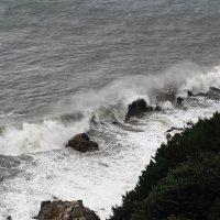 Отголоски японского тайфуна Неогури в Пусане :: Ольга Нестеренко
