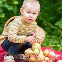 Яблочное лето :: Николай Кислицын