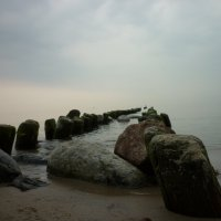 08.09.2014 Балтика :: Oxi --