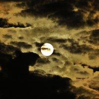 луна за облаками :: Вадим Виловатый
